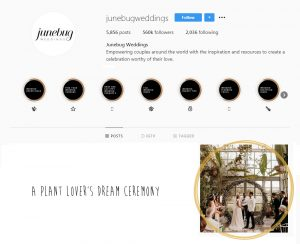 Press review from June Bug Weddings
